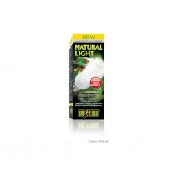 Natural Light / Lampada di...