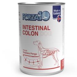 Intestinal Colon al pesce
