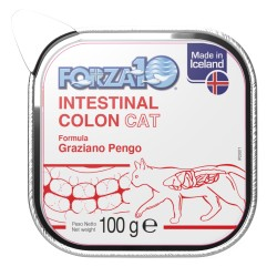 Intestinal COLON