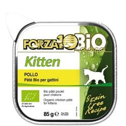 Every Day Kitten pollo