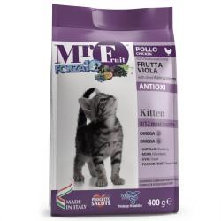 Mr. Fruit Kitten